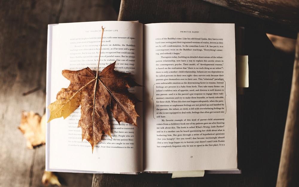 ventajas de leer libros en papel